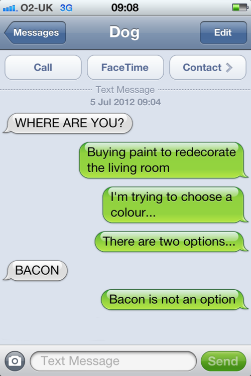 Humourous txt from Dog
