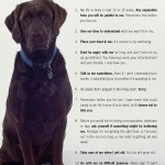 10 Dog Commandments